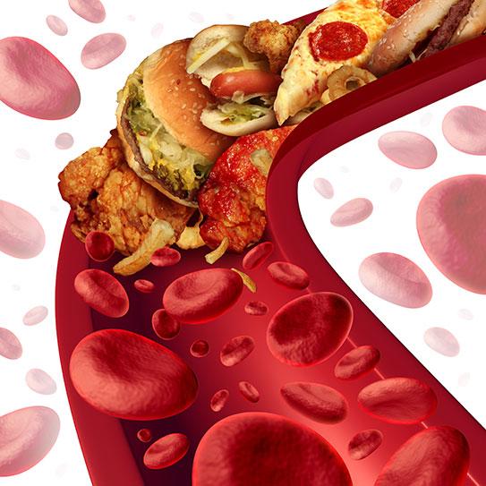 хороший плохой холестерин в крови