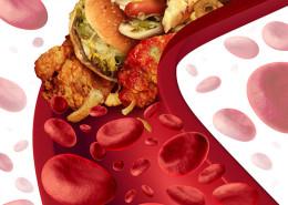 Плохой и хороший холестерин
